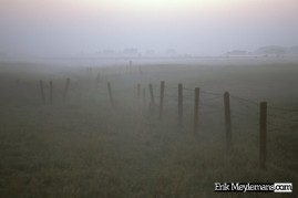 Foggy fenced meadow