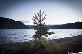 Flåvatn lake