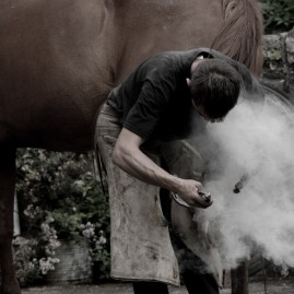 Blacksmith attaching a very hot horseshoe to horse's hoof
