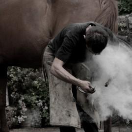 Blacksmith attaching a very hot horseshoe to horse's hoof