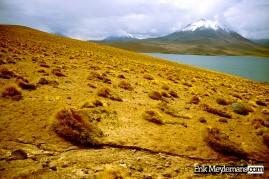 Chilean lake view