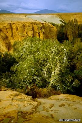 Fertil canyon
